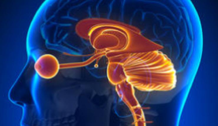Innovative Medtech IsTacklingThe $12 Billion DollarADD/ADHDEpidemic