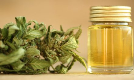Canadian companies intend to penetrate the US cannabis market via CBD sales