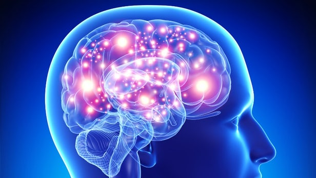 Experts Consider New Ways to Invest in the Battle Against Alzheimer's Disease
